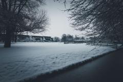 2017-Winter-1.jpg