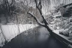 2017-Winter-2.jpg